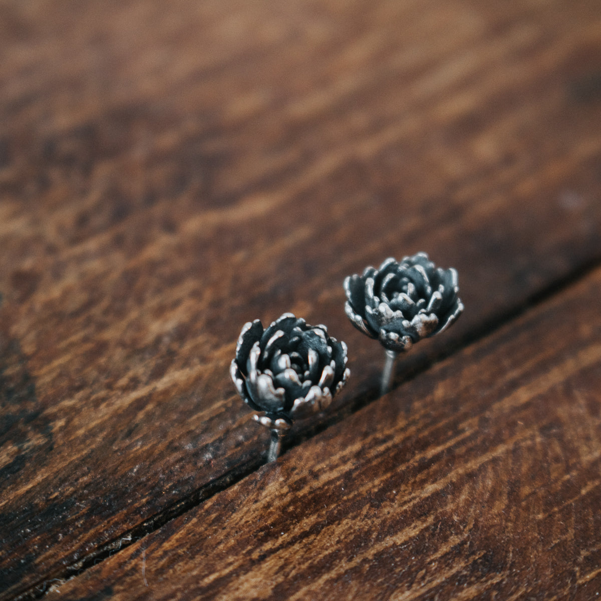Outstanding Succulent Studs No 1 Caraccident5 Cool Chair Designs And Ideas Caraccident5Info