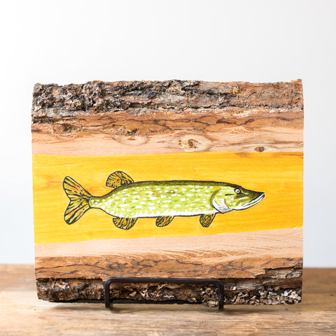 Northern Pike (Esox Lucius) | Drawing on Wood
