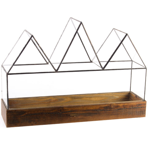 Fortunes Case Terrarium - Local Pickup Only - Artisan's Bench