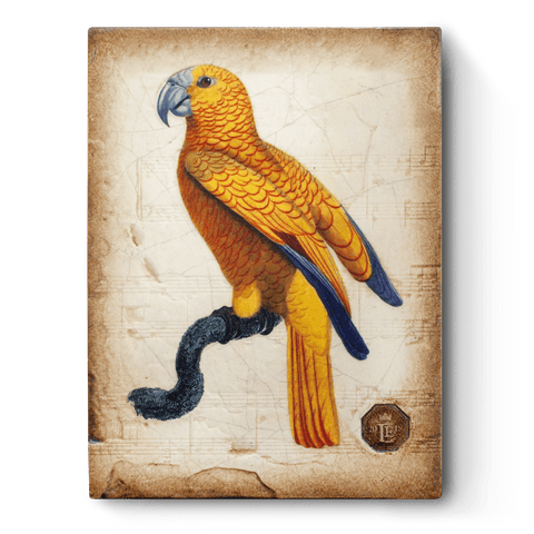 RLE18-02 Parrot | Limited Sid Dickens Memory Block