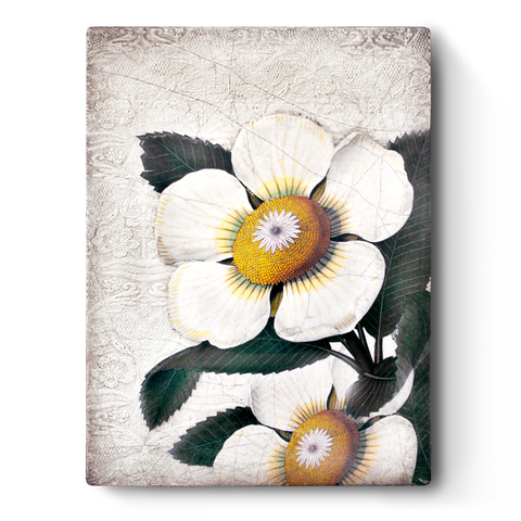 White Blossoms T487 | Sid Dickens Memory Block