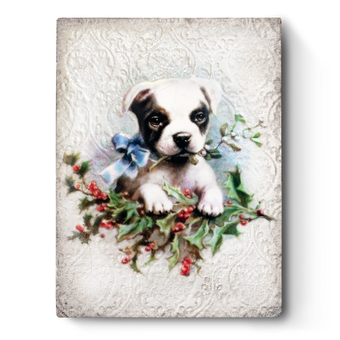 Winter's Bliss T496 (Retired) | Sid Dickens Memory Block