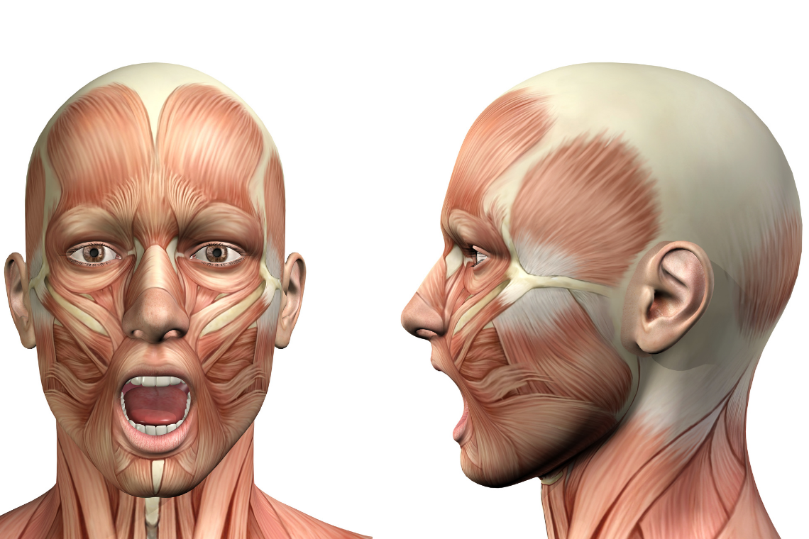 Jaw Exercises For TMJ