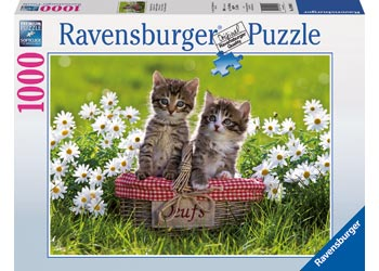 PUZZLE RAVENSBURGER 1000 PIECE PICNIC IN THE MEADOW