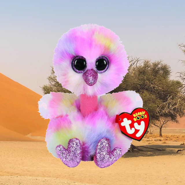 Avery the multicoloured ostrich. Pink sparkly eyes. Sandy, desert background.