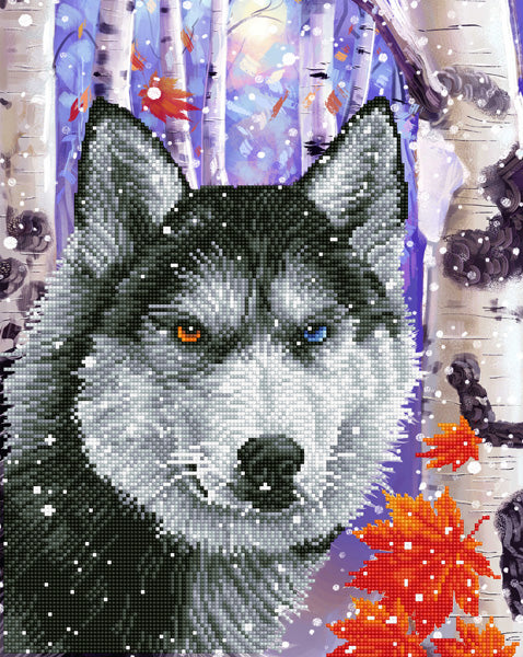 Forest Wolf - 40x50cm - Diamond Dotz