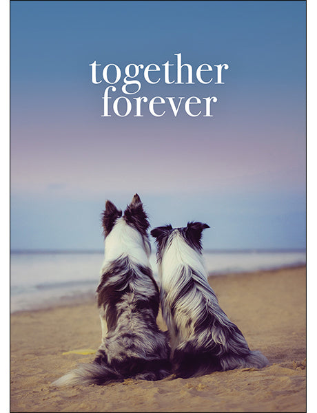 Affirmations Animal Card - Together Forever