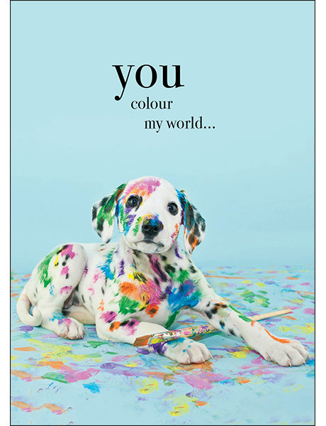 Affirmations Animal Card - You Colour My World