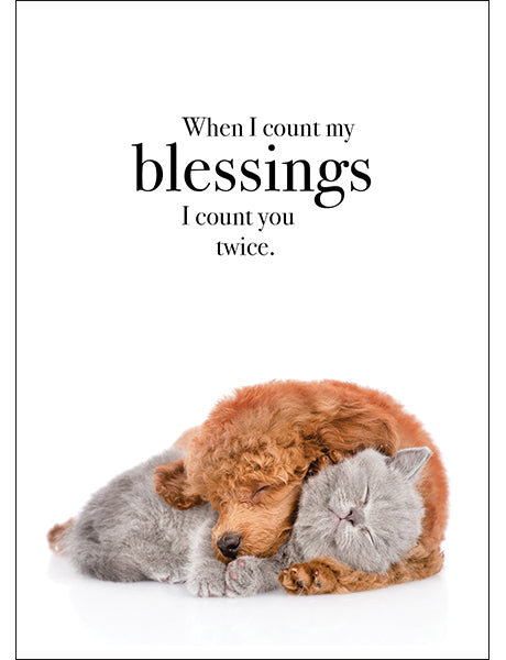 Affirmations Animal Card - When I Count My Blessings
