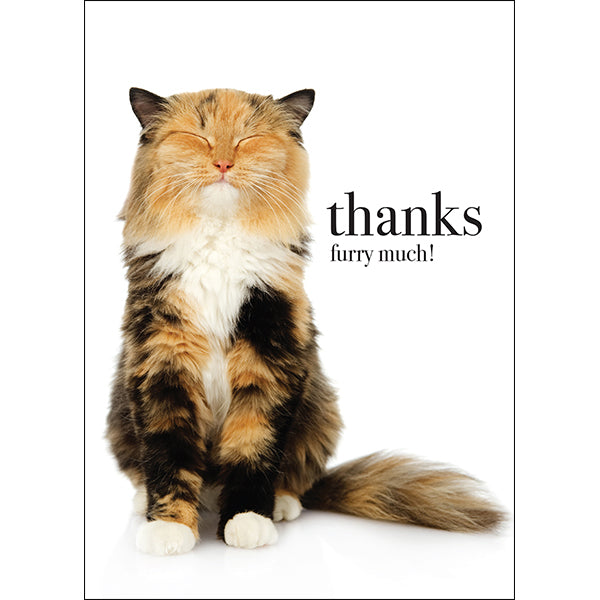 Affirmations Animal Card - Thanks Furry Much