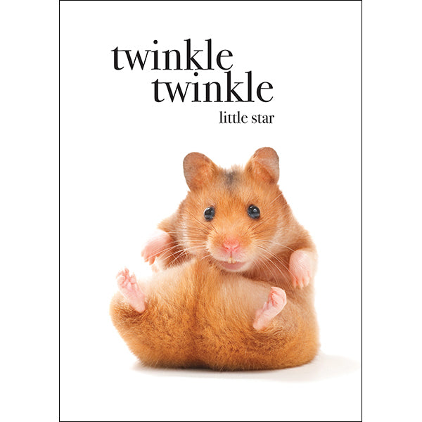 Affirmations Animal Card - Twinkle Twinkle Little Star