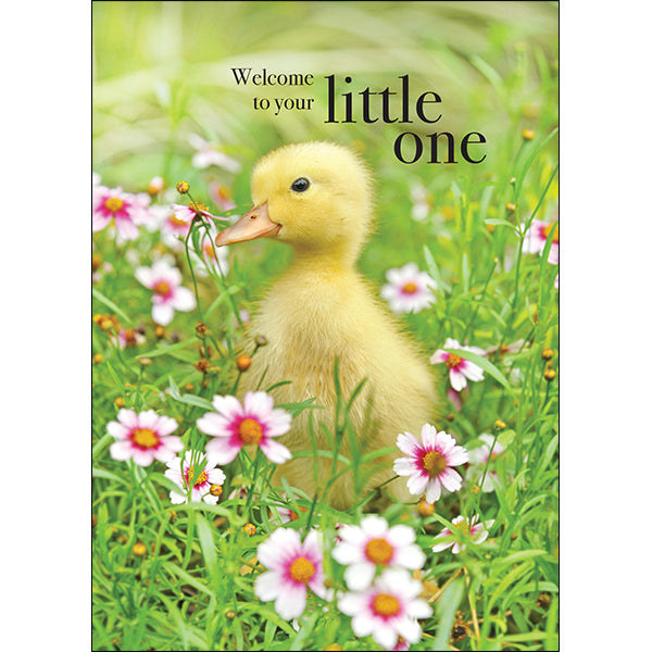 Affirmations Animal Card - Welcome to your Little One