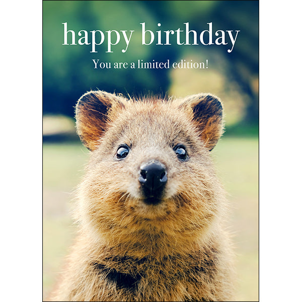 Affirmations Animal Card - Happy Birthday. You Are A Limited Edition