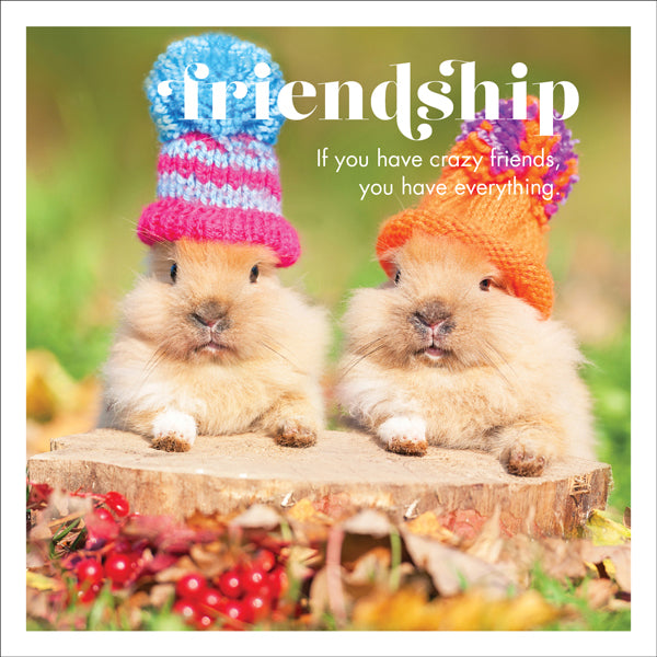 Affirmations Photographic Card - Friendship