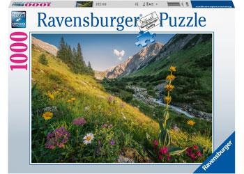 1000 Pieces - Magical Valley - Ravensburger Puzzle