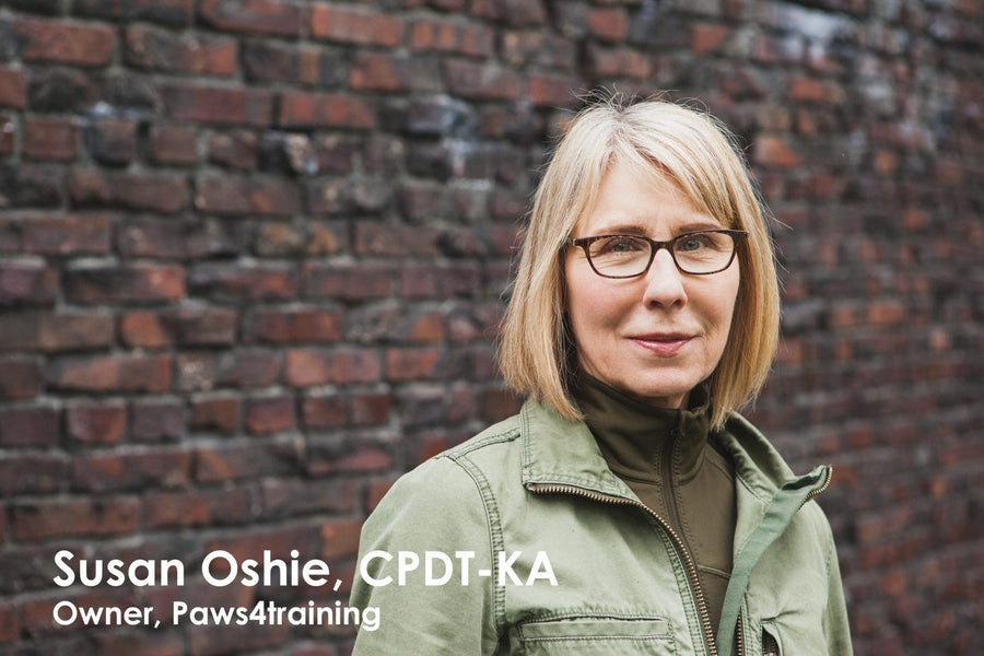 Interview with Susan Oshie, CPDT-KA & owner of Paws4Training