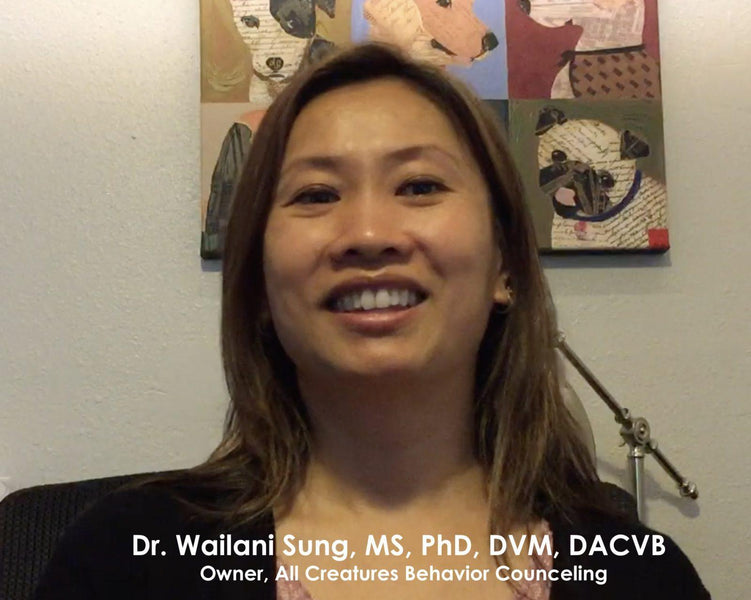 Interview with Dr. Wailani Sung, MS, PhD, DVM, DACVB