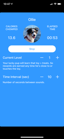 Active Play Screen for Smart Dog Game