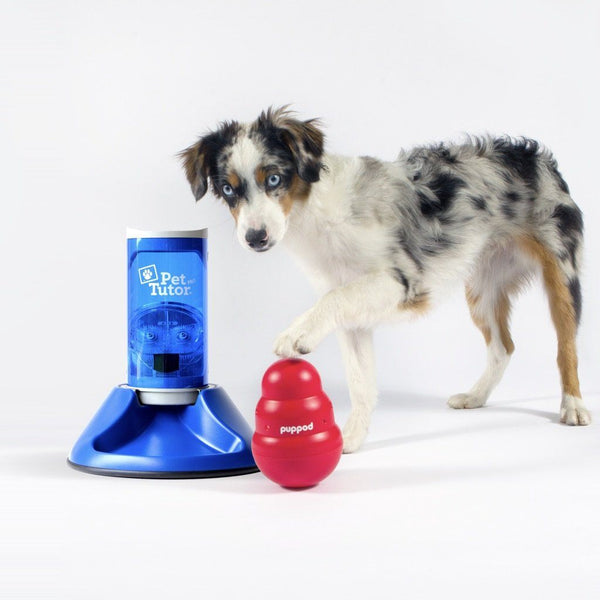 PupPod Wobbler w/ Pet Tutor Smart Dog Toys PupPod