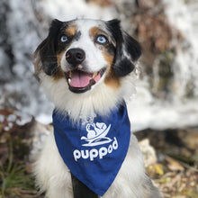 Load image into Gallery viewer, PupPod Bandana Pupparel PupPod