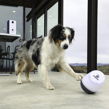Load image into Gallery viewer, PupPod Rocker with Feeder Smart Dog Toys PupPod