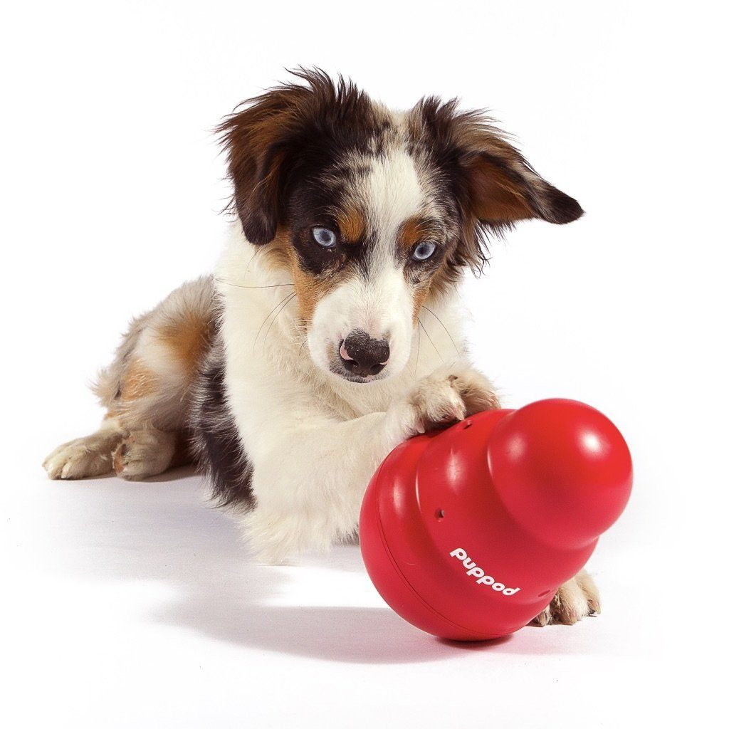 PupPod Wobbler w/o Feeder Smart Dog Toys PupPod