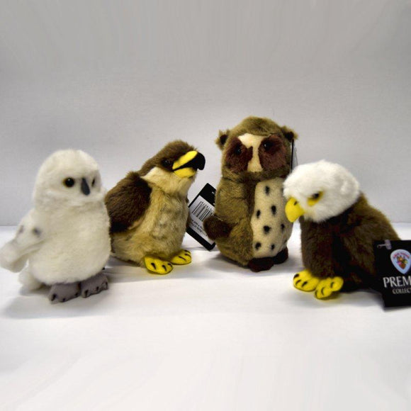 Set of 4 Bird of Prey 13cm Soft Toys