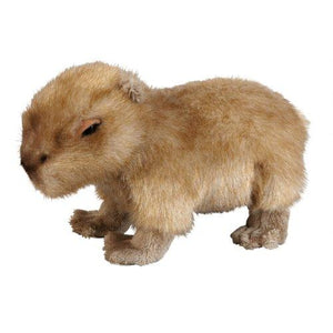 25cm Capybara Cuddly Plush Toy