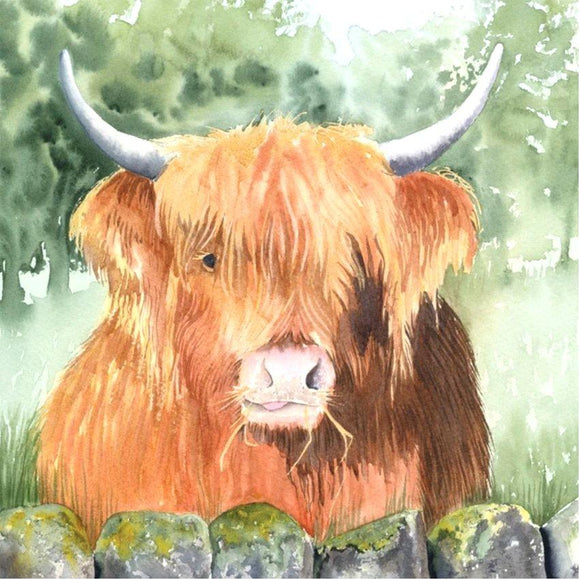 Hamish Highland Cow Greetings Card by Denise Schoenberg