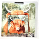 Hamish Highland Cow Greetings Card wtth Drinks Coaster by Denise Schoenberg