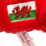 Welsh Dragon Cuddly Soft Toy Gift