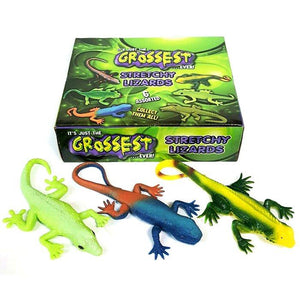 Box of 24 Stretchy Lizard Toys For Groups Schools PTA Fundraising Idea