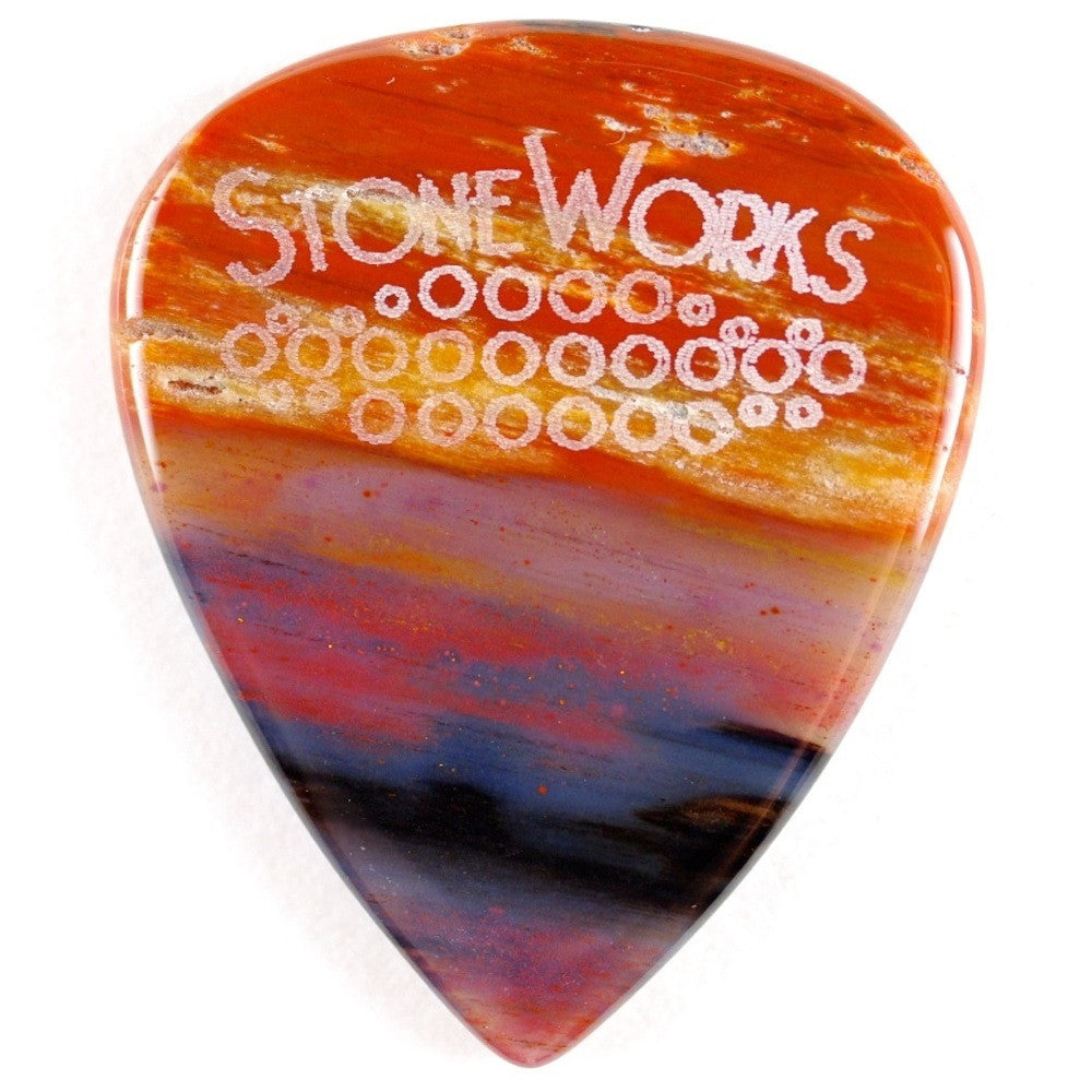 Arizona Petrified Wood - Stone Guitar Pick