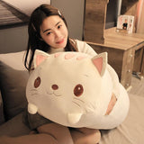 Peluche Coussin Chat Blanc