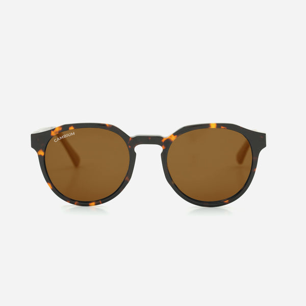 Cambium Kawela Sunglasses - Recycled Plastic & Wood Frame Vintage Brown