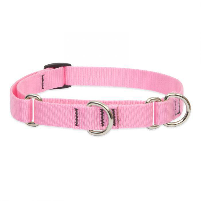 "Lupine 3/4"" Martingale Training Collar 10"" to 14"" Pink - Mr Mochas Pet Supplies"