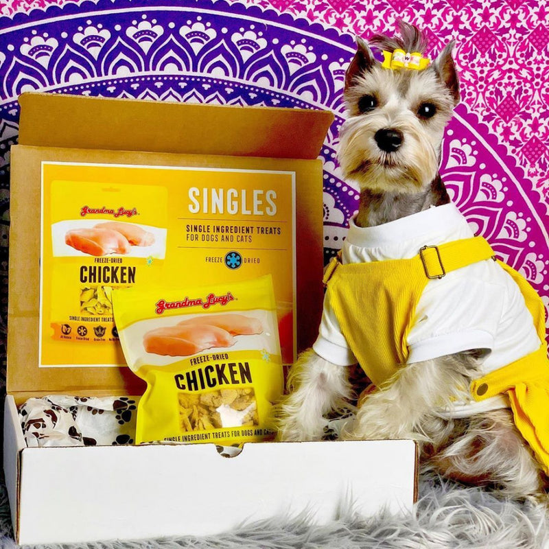 Grandma Lucy's Singles Freeze Dried Chicken Single Ingredient Pet Treats - Mr Mochas Pet Supplies