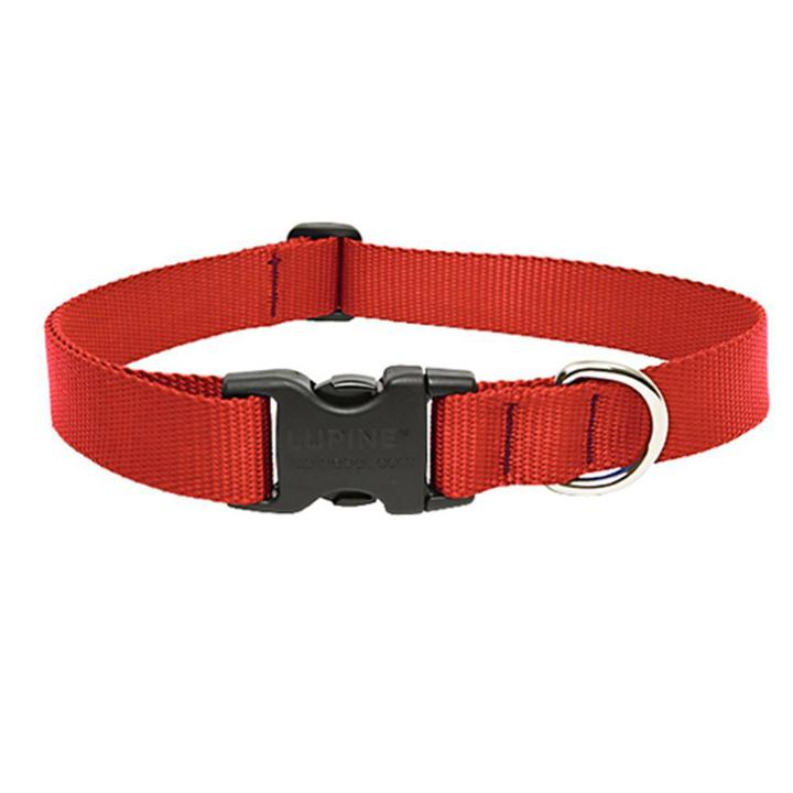 Lupine 1in Red 25-31 Adj Collar - Mr Mochas Pet Supplies