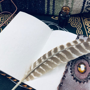 leather bound journal with tigers eye stone laying open with quill and ink