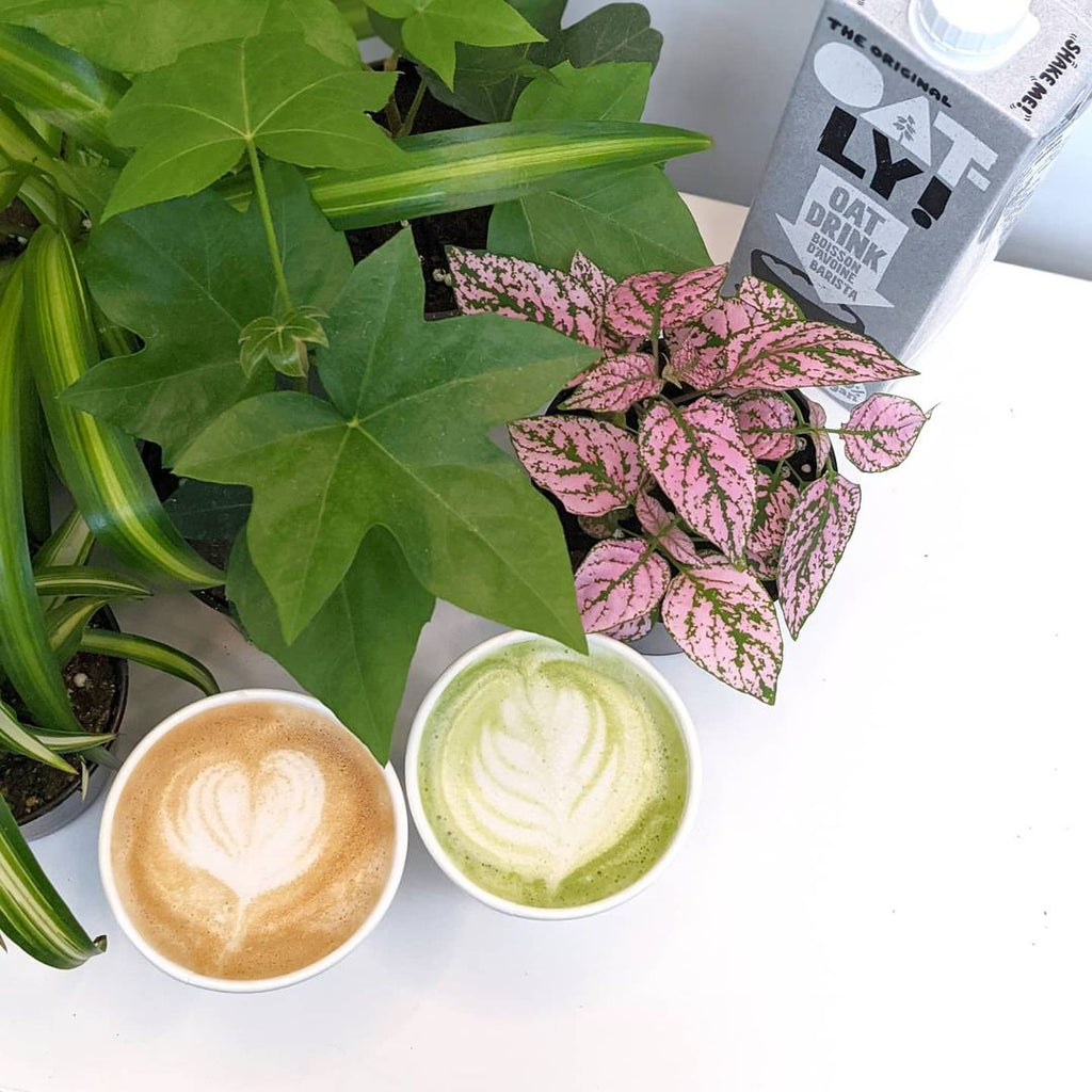 photo of  free latte event