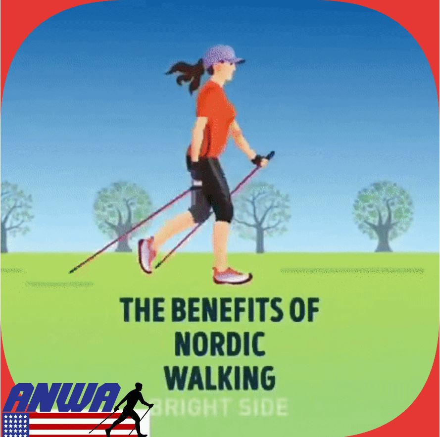 What is Nordic Walking?