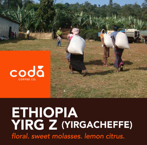 Ethiopian Yirgacheffe Kochere Zero Defect 12oz Drip Grind - Disposables-Gradys