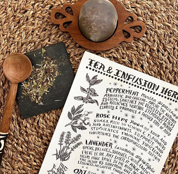 Tea and Infusion Herbs Poster | Thyme Herbal