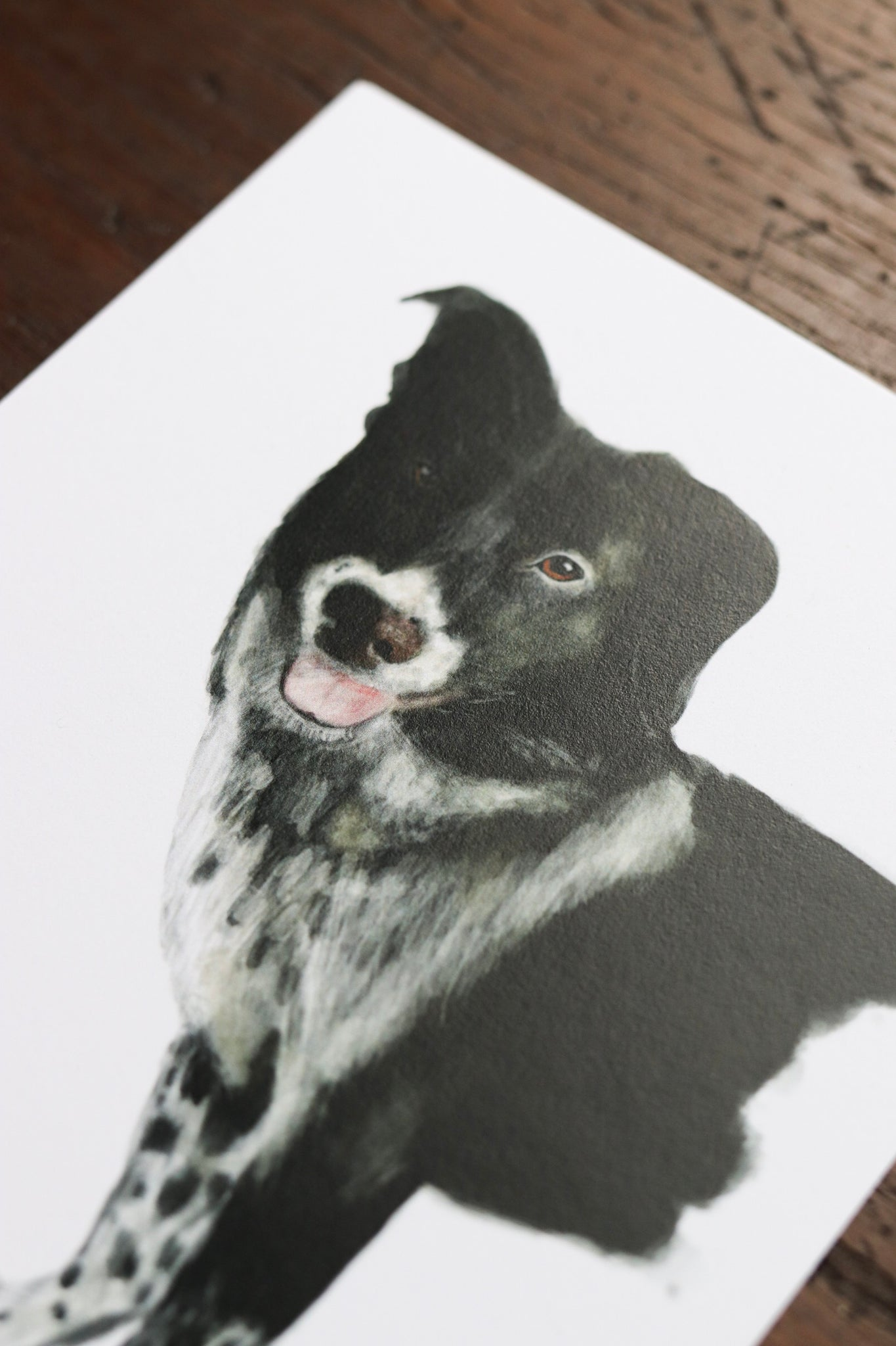 Custom Pet Portrait Illustrations | Heirloom Gift