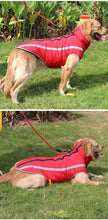 Load image into Gallery viewer, Winter Cotton Jacket for big dogs - جاكيت مناسبة للكلاب الكبيرة
