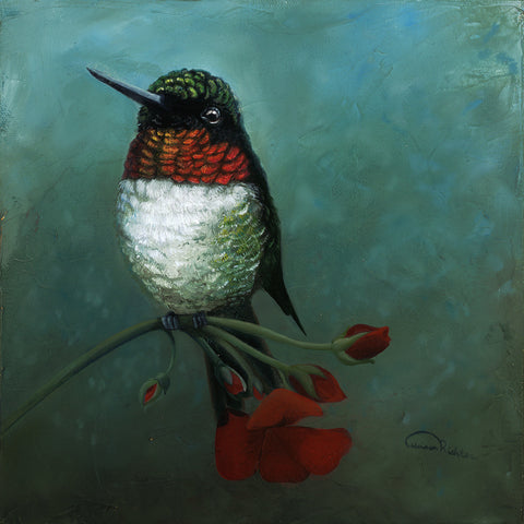 "Rubythroat Hummingbird 'In Tune' - Oil On Canvas Original ( 10"" x 10"" )"
