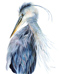 Blue Heron Artwork Print