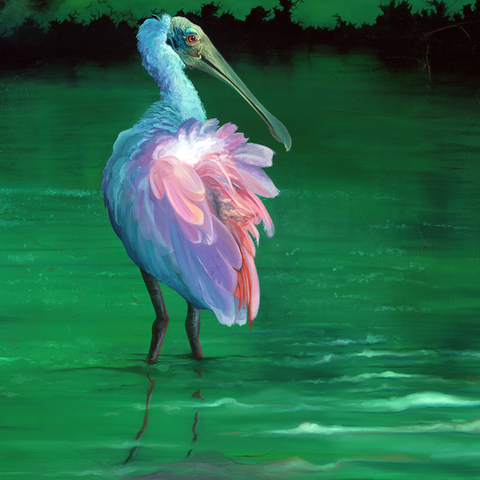 ROSEATE SPOONBILL In Reflective Water OIL ON CANVAS ORIGINAL