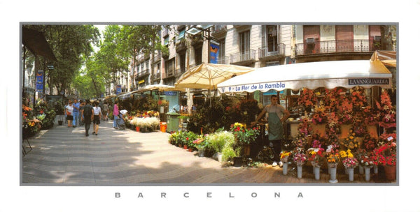 Panoramic format Spain Postcard,  boulevard of flowers, Rambla de les flors HB2