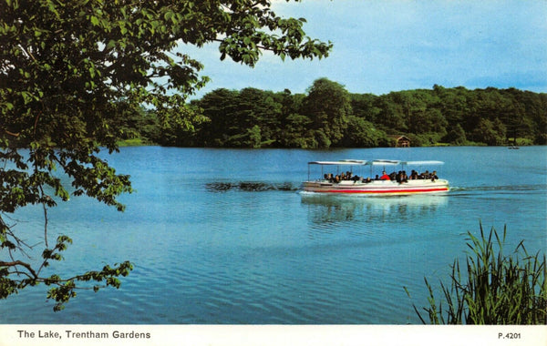 Vintage Staffordshire Postcard, The Lake, Trentham Gardens HN9
